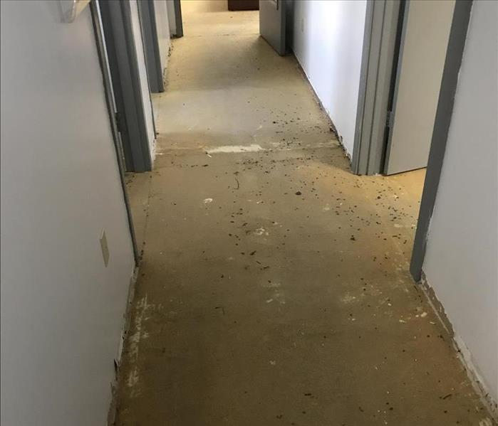 Summer Storm Creates Soggy Office   After