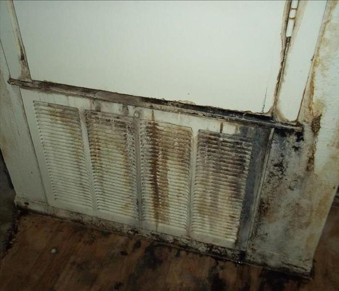 mold on vent