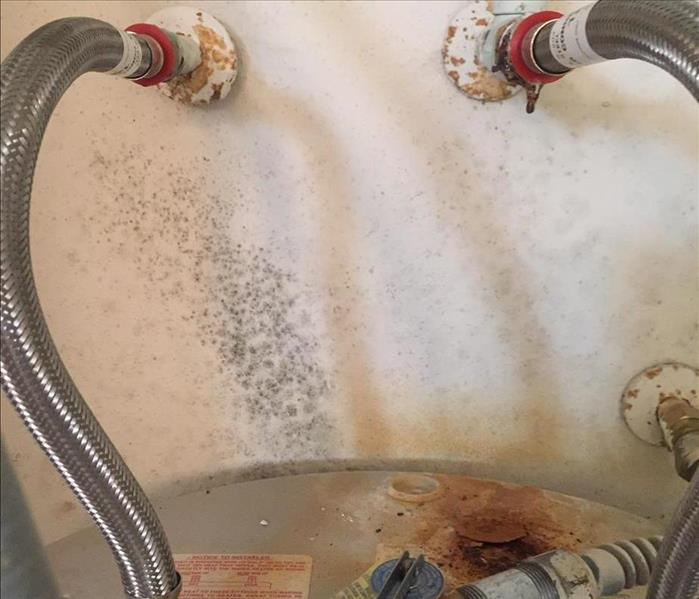 mold growth on wall behind water heater