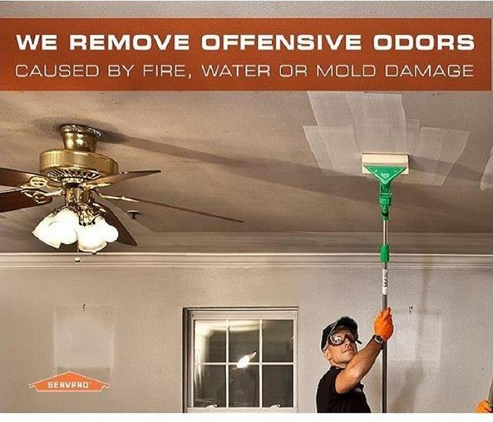 Cleaning Destroy Odors with Deodorization