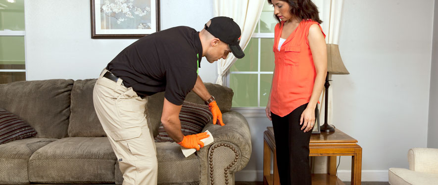 Magnolia, TX carpet upholstery cleaning